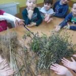 i stworzyliśmy wielką palme wielkanocną